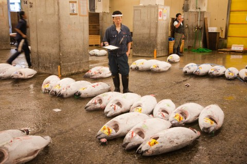 FishMarketandSushi012