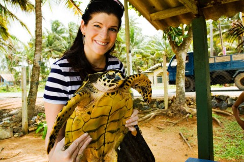 TurtleConservation008