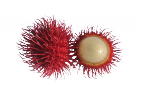 rambutan