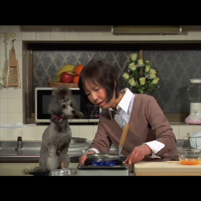 "Accidental Funnies - Japanese ""Cooking with Dog"" is Campy, Quirky Fun"