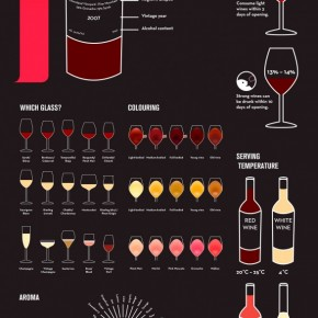 Simple but Cool Infographic on Wine